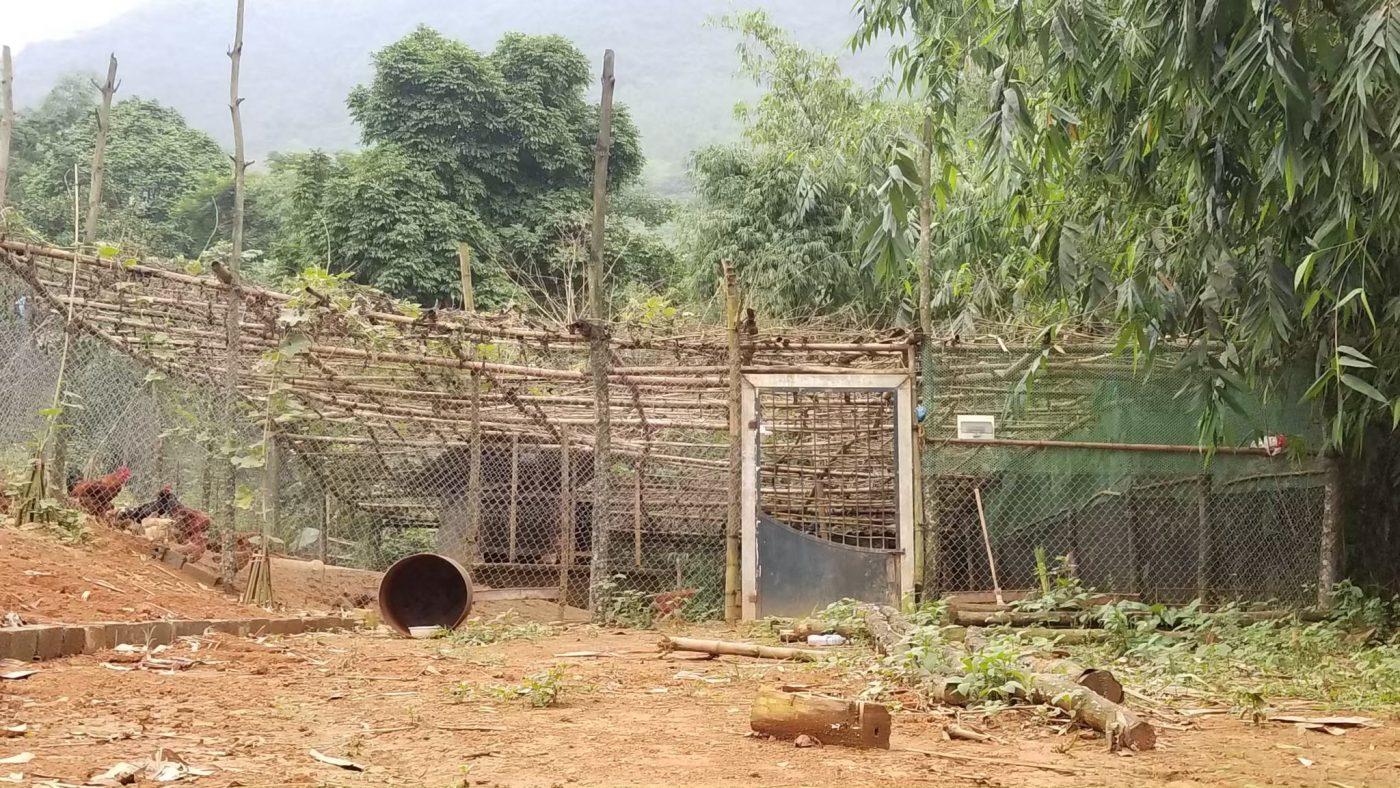 Khu chăn nuôi & trồng trọt