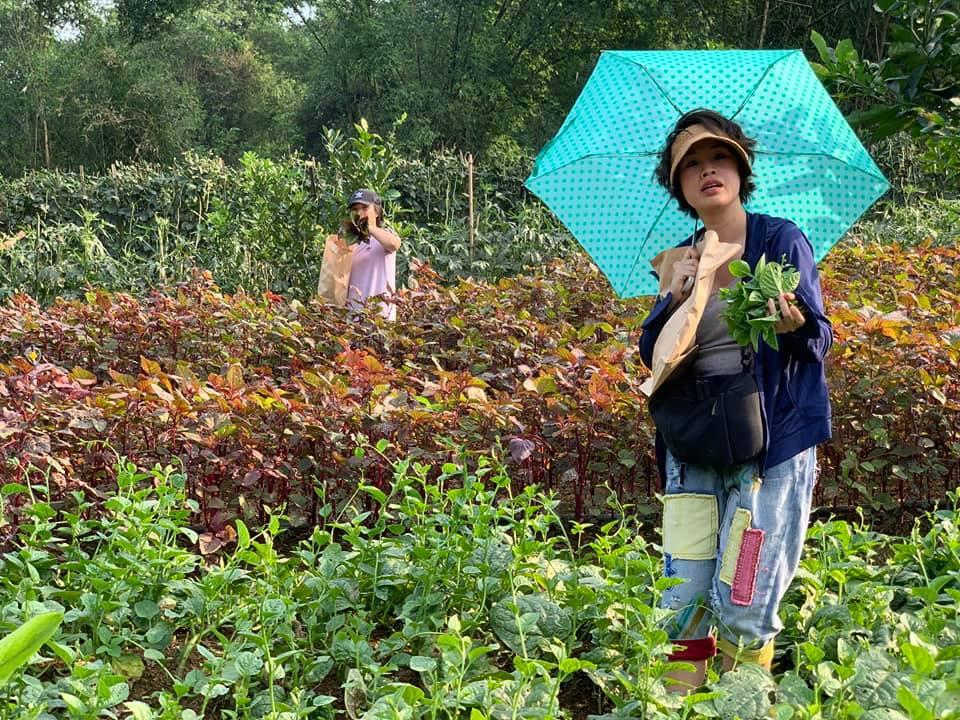 Thực tế tại khu trồng trọt và chăn nuôi của trung tâm Aquila
